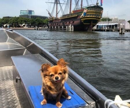 Oosterdok VOC ship Amsterdam